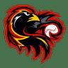 Redwings Softball