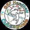 GEF Handball Cubzaguais