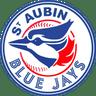 Blue jays Assam Baseball Softball