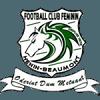 FC Feminin Henin Beaumont