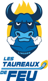 ASPTT LIMOGES Hockey sur glace