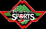 Louverné Sports