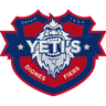 YETI'S GRENOBLE ROLLER HOCKEY