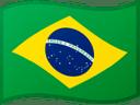 Brazil Olympic 2020 Swimming