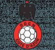 OGC Nice Cote d'Azur Handball