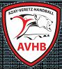 Azay Veretz Handball