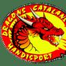 Dragons Handi Rugby XIII