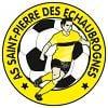 AS St Pierre des Echaubrognes