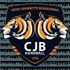CJ Bouguenais Handball