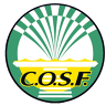CLUB OMNISPORTS DE SAINT FONS