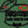 Les Korsaires - Ultimate Frisbee Saint Jean de Luz