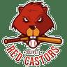 Olivet Red Castors