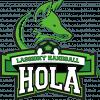 Handball Olympique Lassigny Avenir