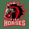 Fire Horses BC Maure de Bretagne